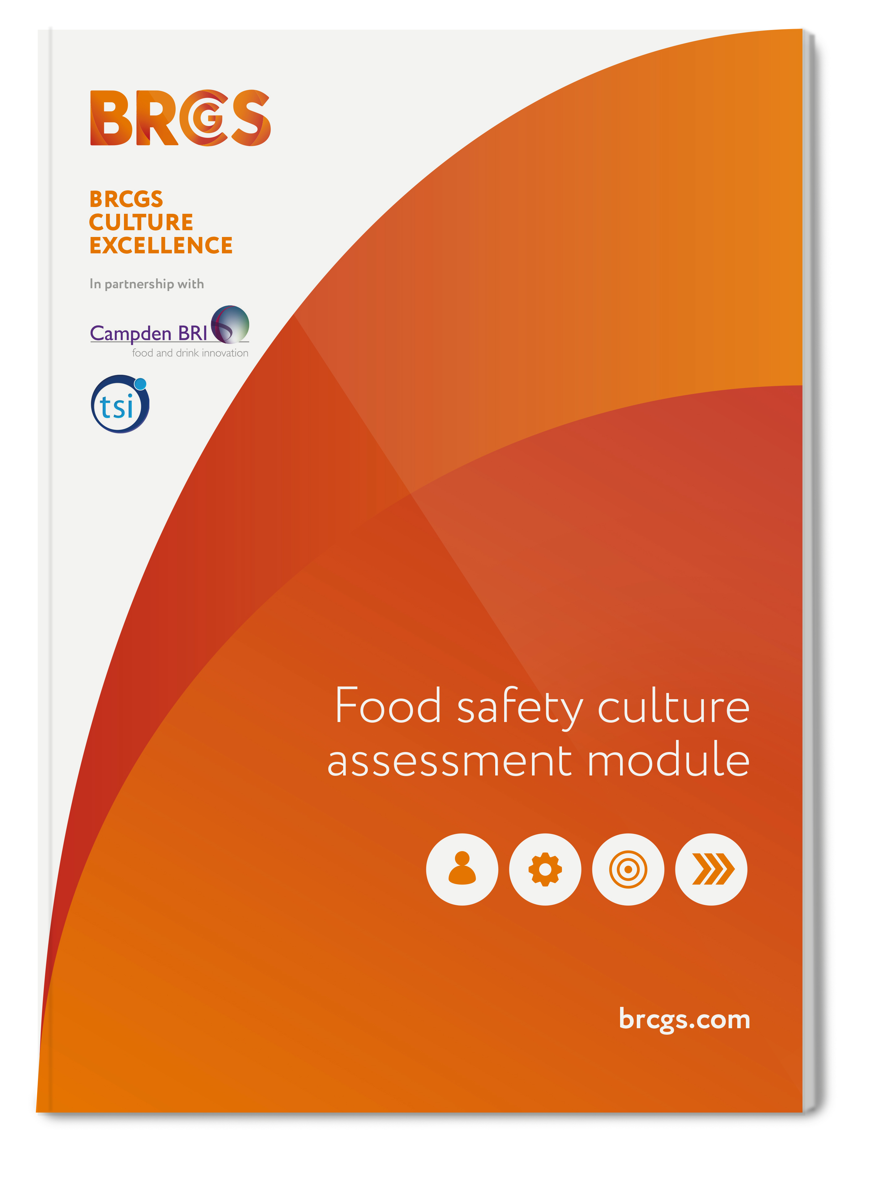 BRCGS Food Safety Culture Excellence - Action Plan Template